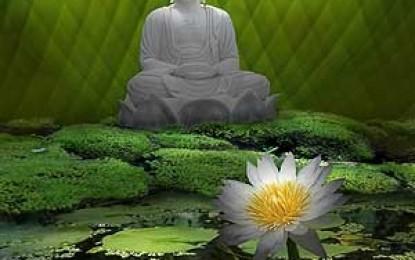 Thực hành Phật giáo trong đời sống hằng ngày