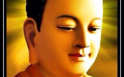 Theo Đạo Phật Bạn Được Gì?