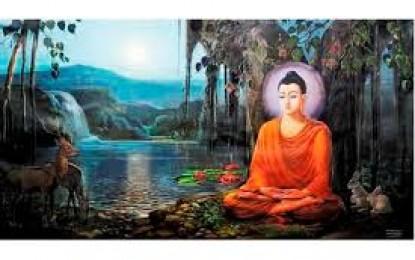 Cuộc Đời Đức Phật Thích Ca
