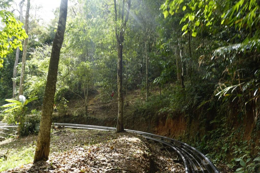 Thăm thác nước Datanla5