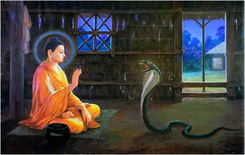 Album Cuộc đời Đức Phật Thích Ca Mâu Ni 28