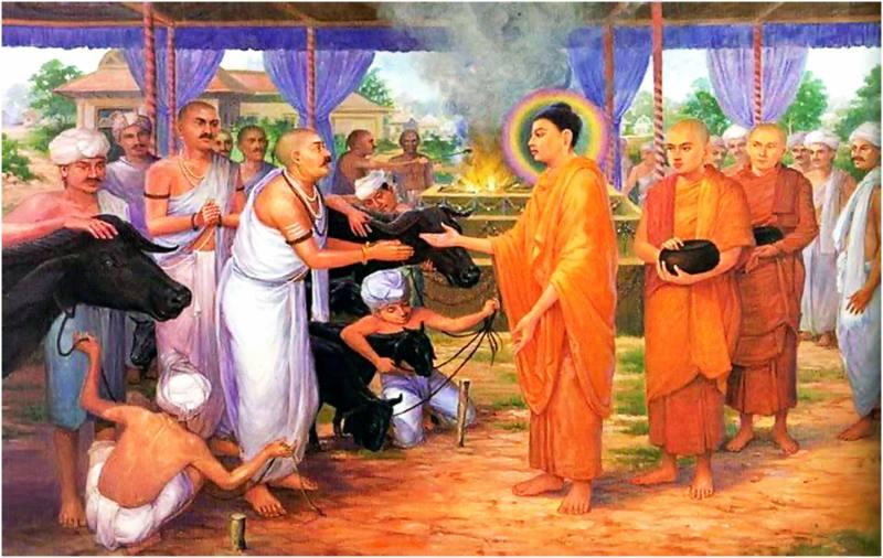 Album Cuộc đời Đức Phật Thích Ca Mâu Ni 81