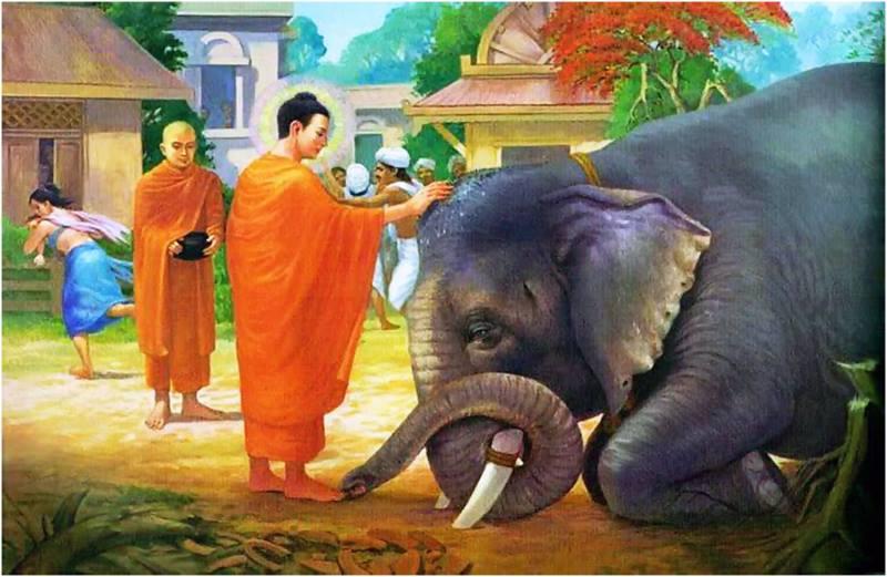 Album Cuộc đời Đức Phật Thích Ca Mâu Ni 90